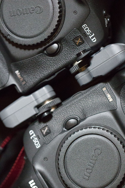 EOS-1D X Mark IIが2台になった。